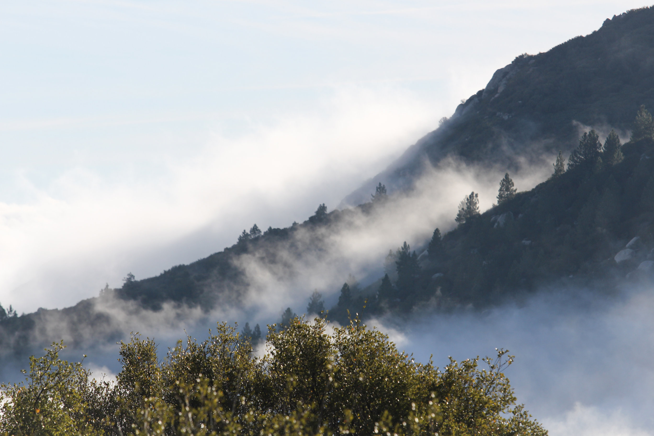 Misty Mountains - Holli Z Photography - 1.jpg