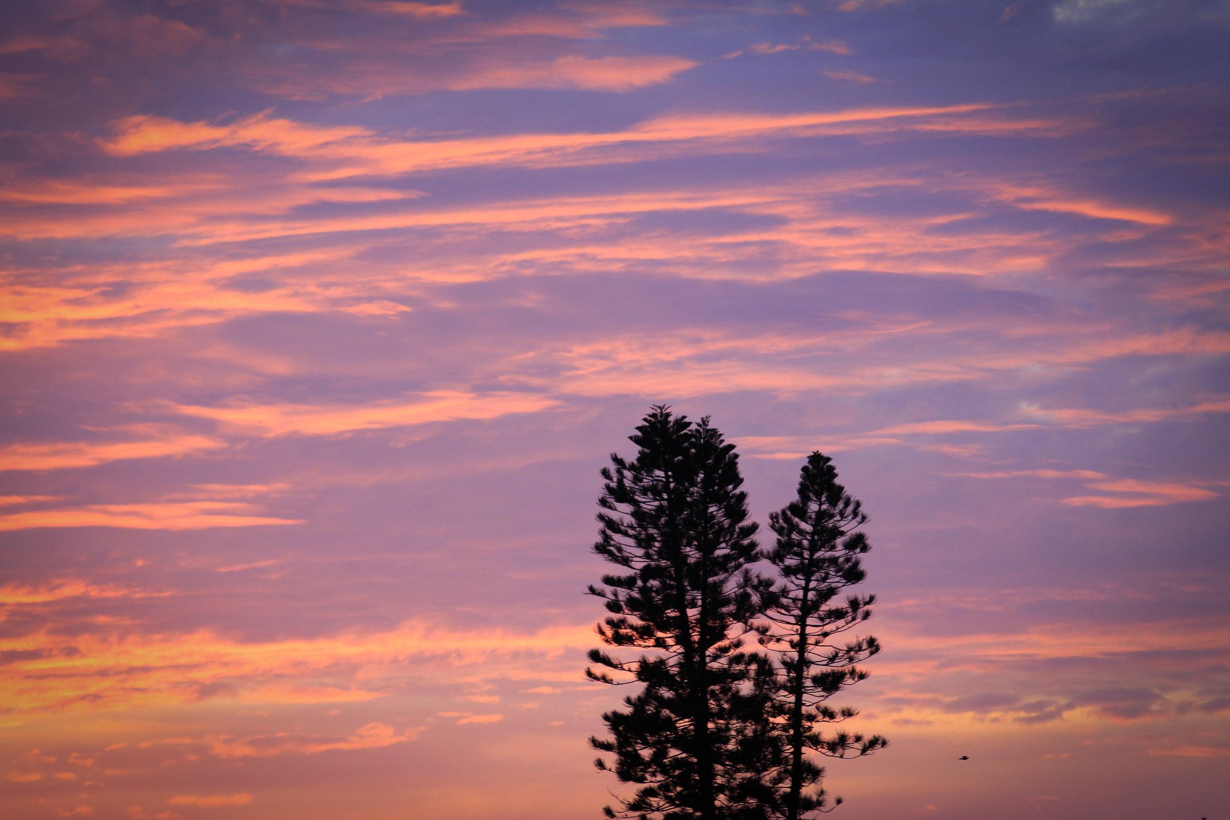 Floridian Sunset - Holli Z Photography - 1.jpg