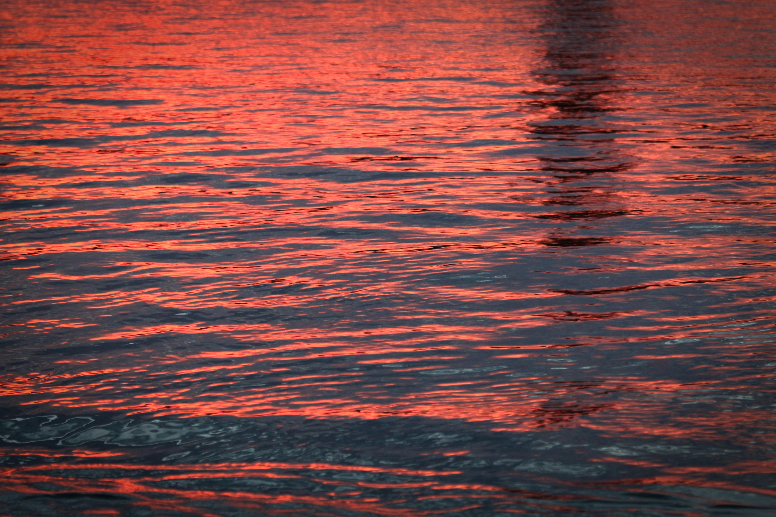 Red Waves - Holli Z Photography - 1.jpg