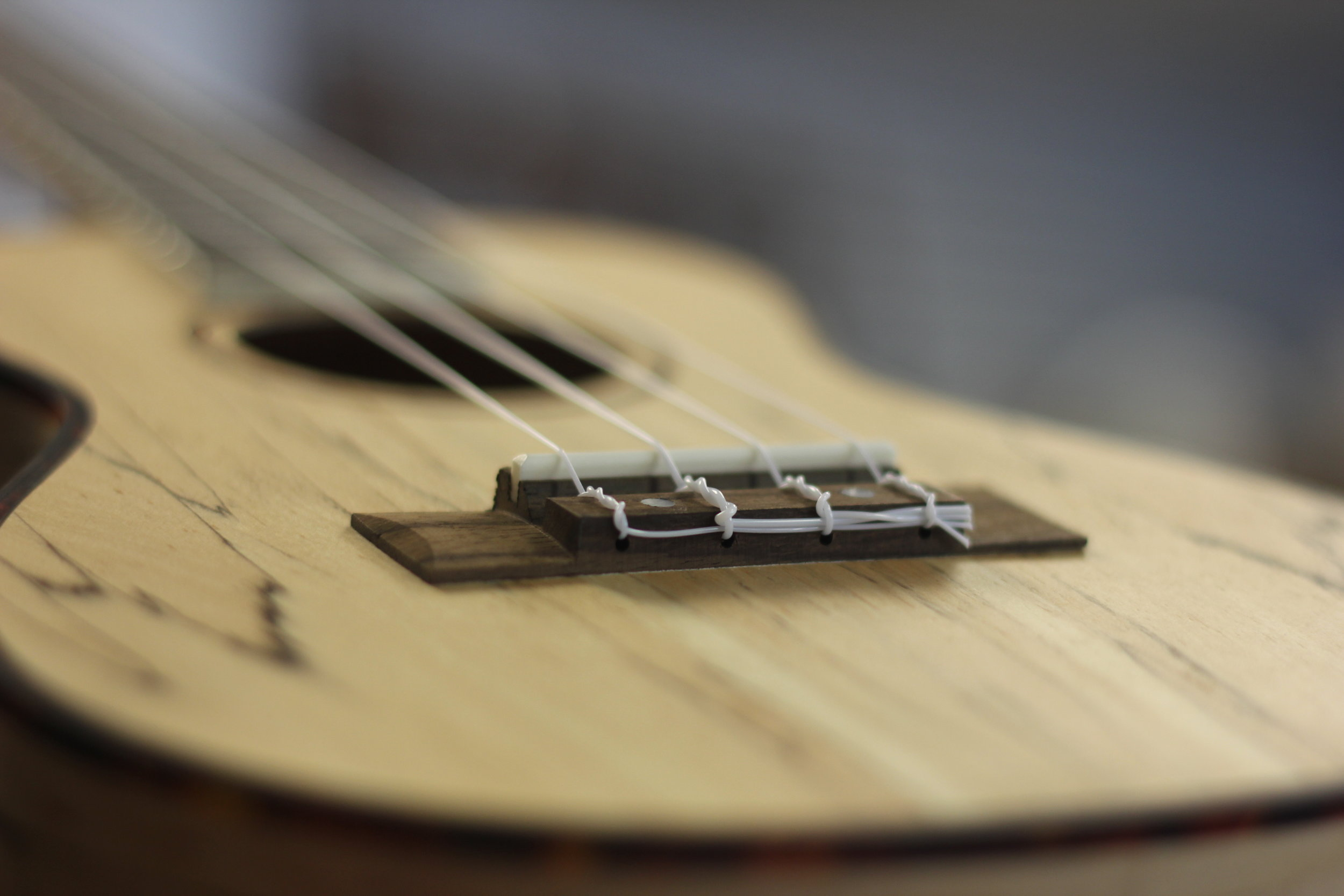 ukulele lessons in concord