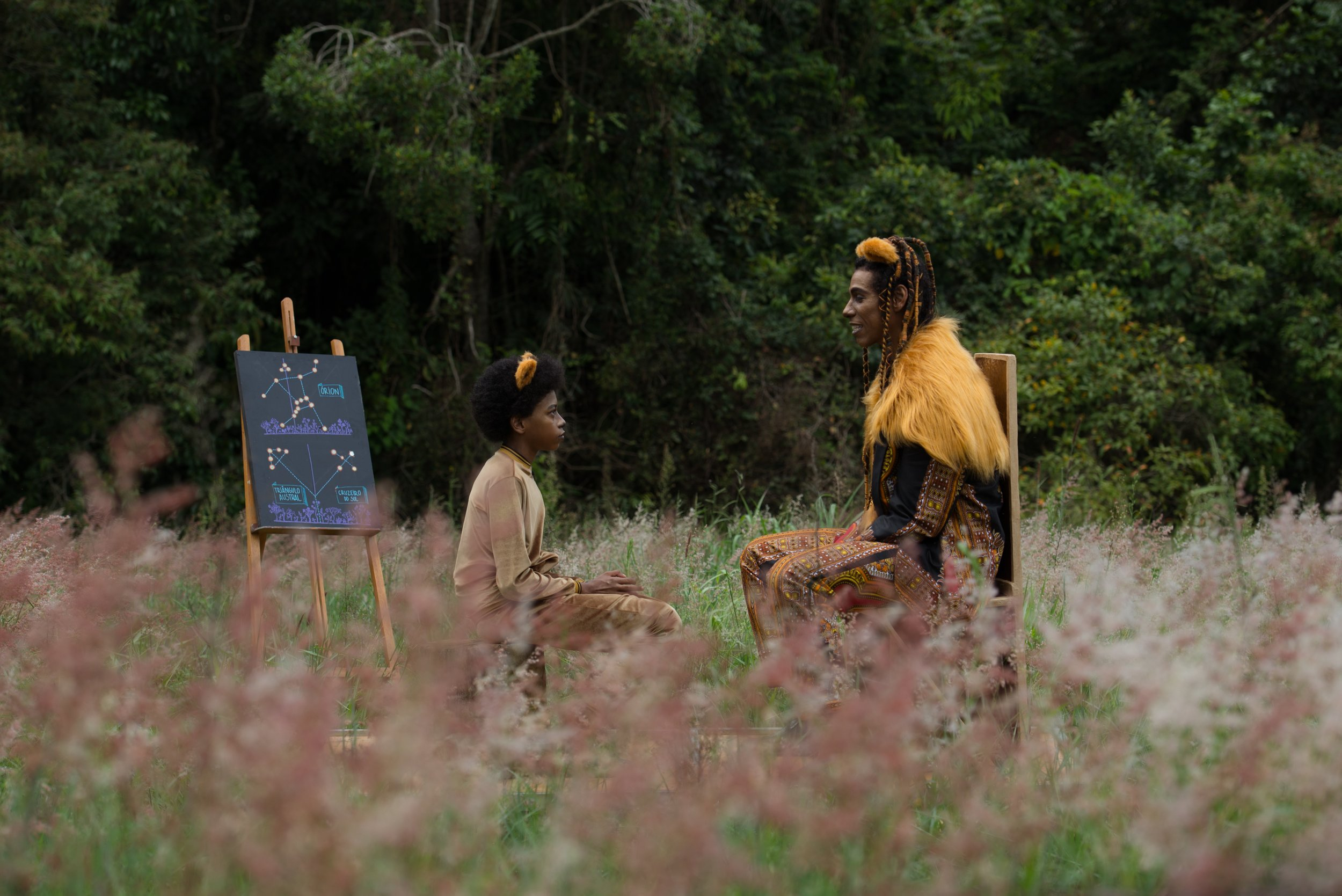 O Menino Leão e a Menina Coruja