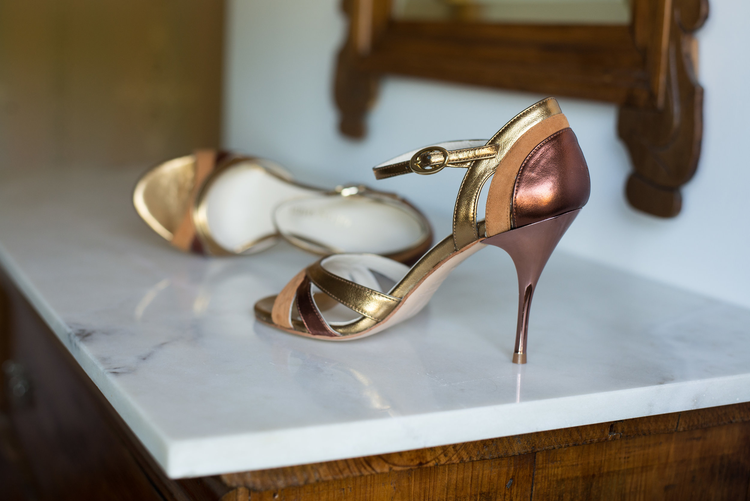 Bronze and copper elegant tango shoes for ladies
