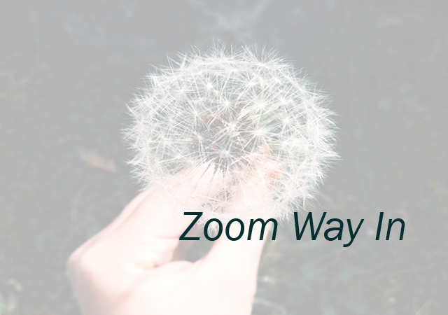 Module Two: Zoom Way In  Get clarity on what one thing you can start doing today. You will also learn how to break up your ideas and goals into attainable steps.