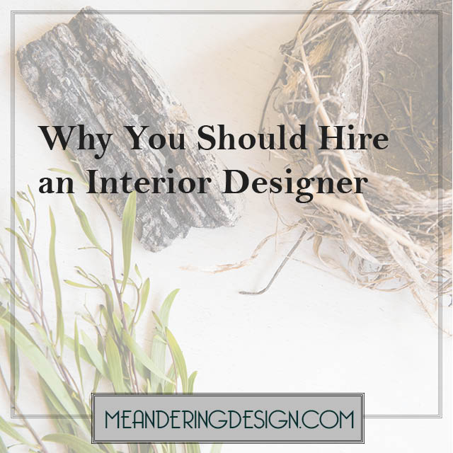 Photo of plants and birds' nest with text overlay 'why you should hire an interior designer'