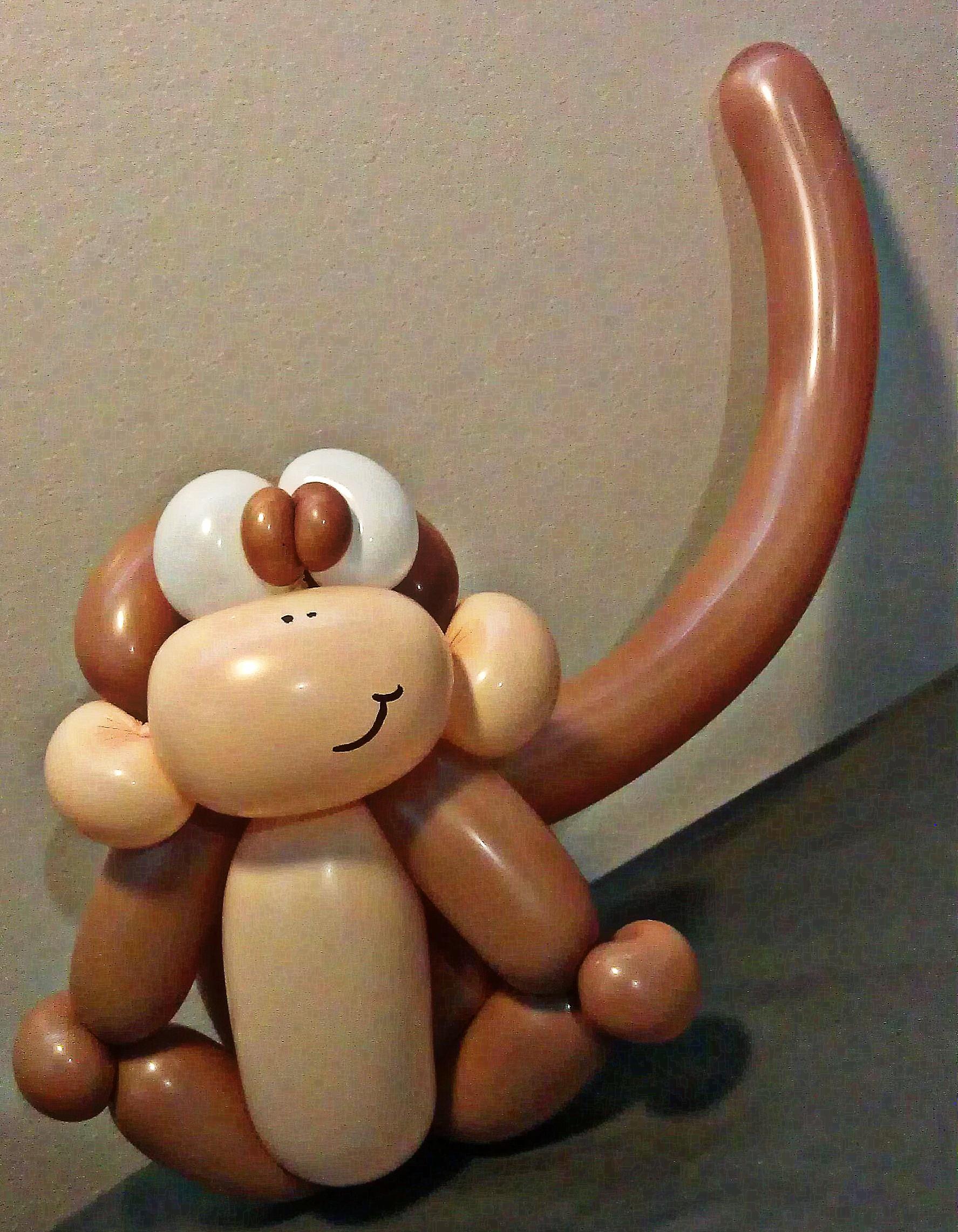 Baby Monkey Boma.jpg