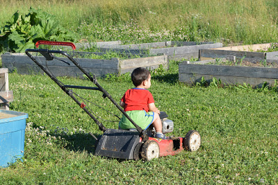 This lawnmower is currently out of commission--another casualty of the rocks we grow so well here. Not that Levi cares!