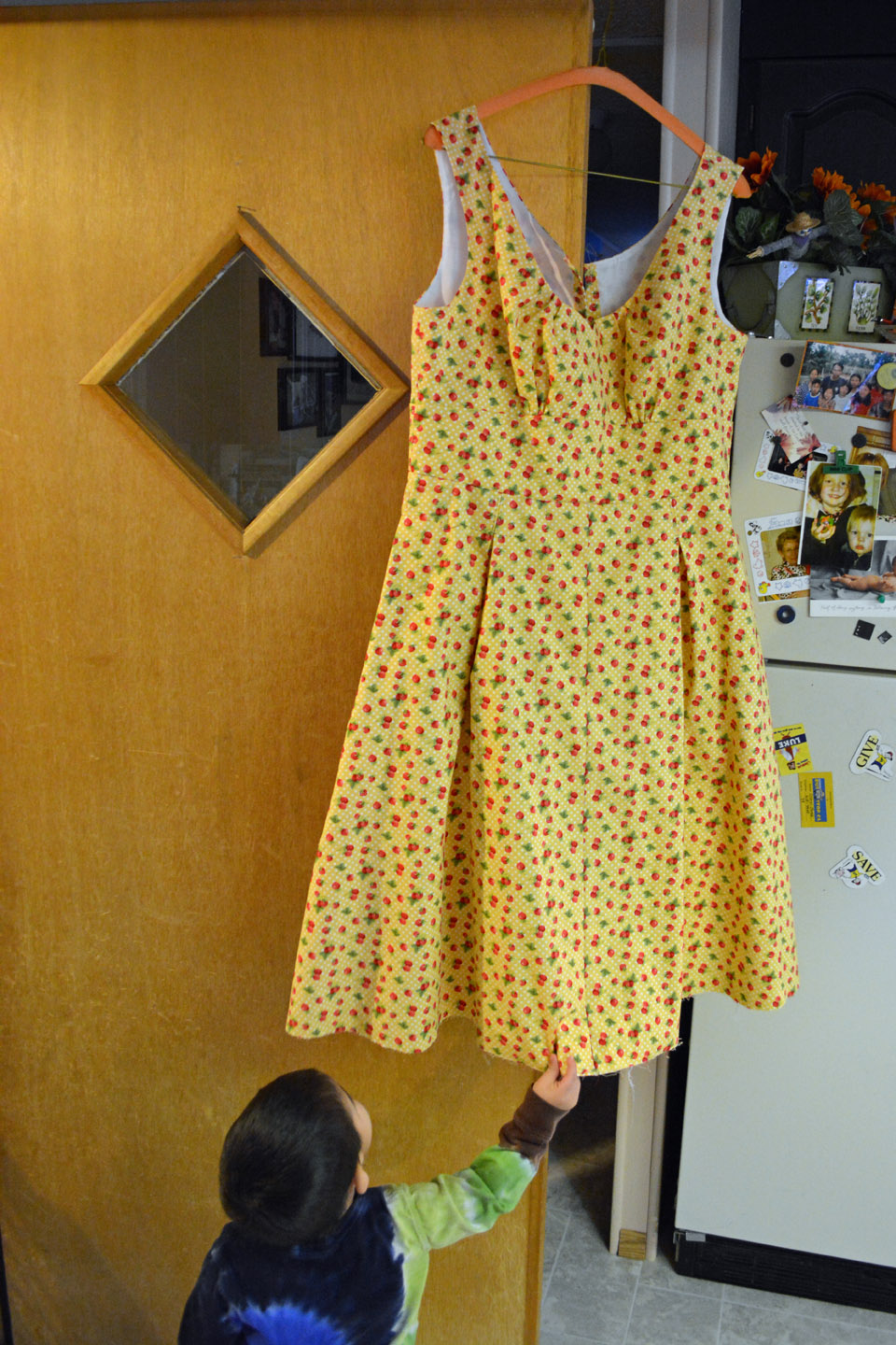 StrawberryFieldsdress