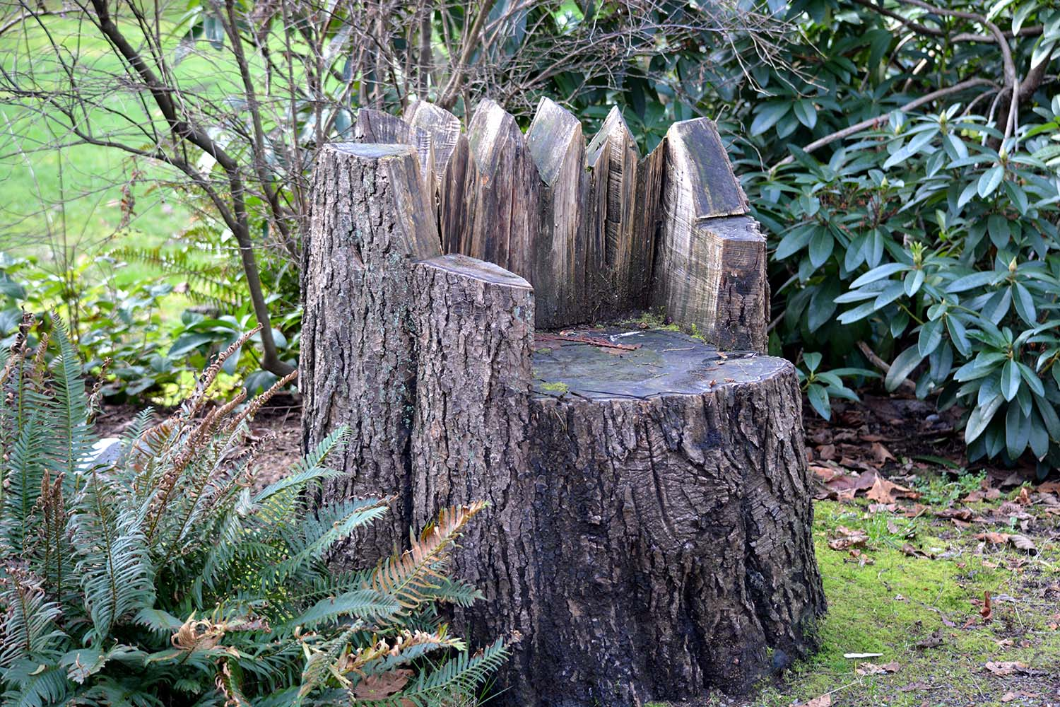 "This ""stump chair"" sits by the driveway."