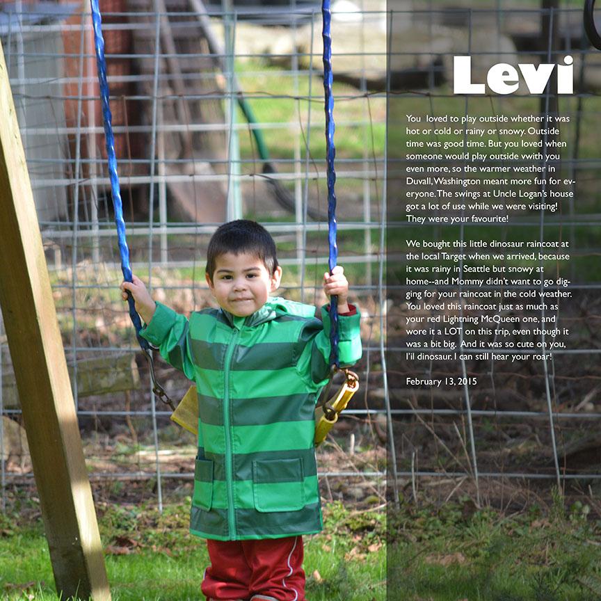 Levi on the Swing web.jpg