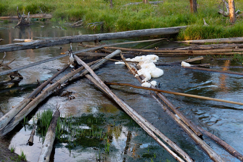 Photo courtesy of  lakephotography/123rf.com .