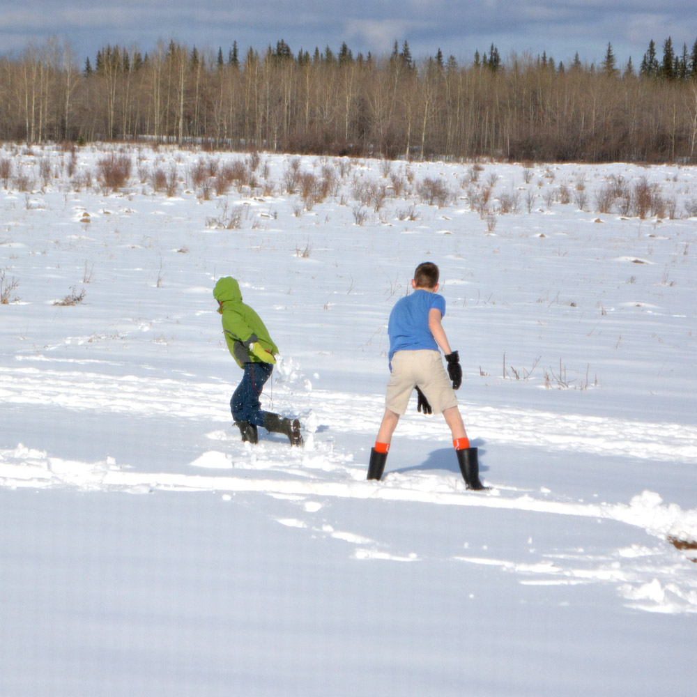 Snowball fights in Alberta. I bet Noah was glad he was dressed more warmly than his older brother with the much better throwing arm...