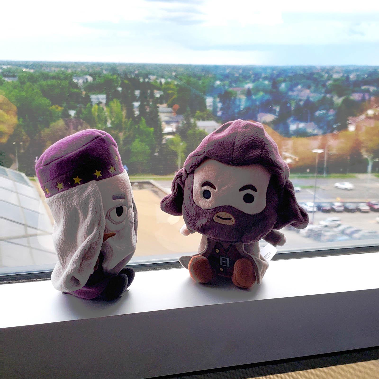 Dumbledore and Hagrid enjoying the Edmonton skyline from the Fantasyland Hotel.