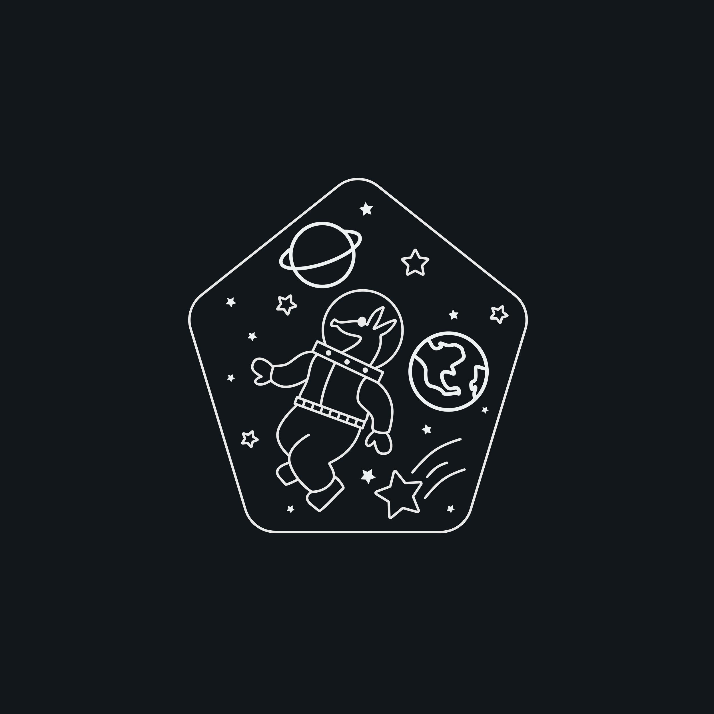 Aardvarks in Space