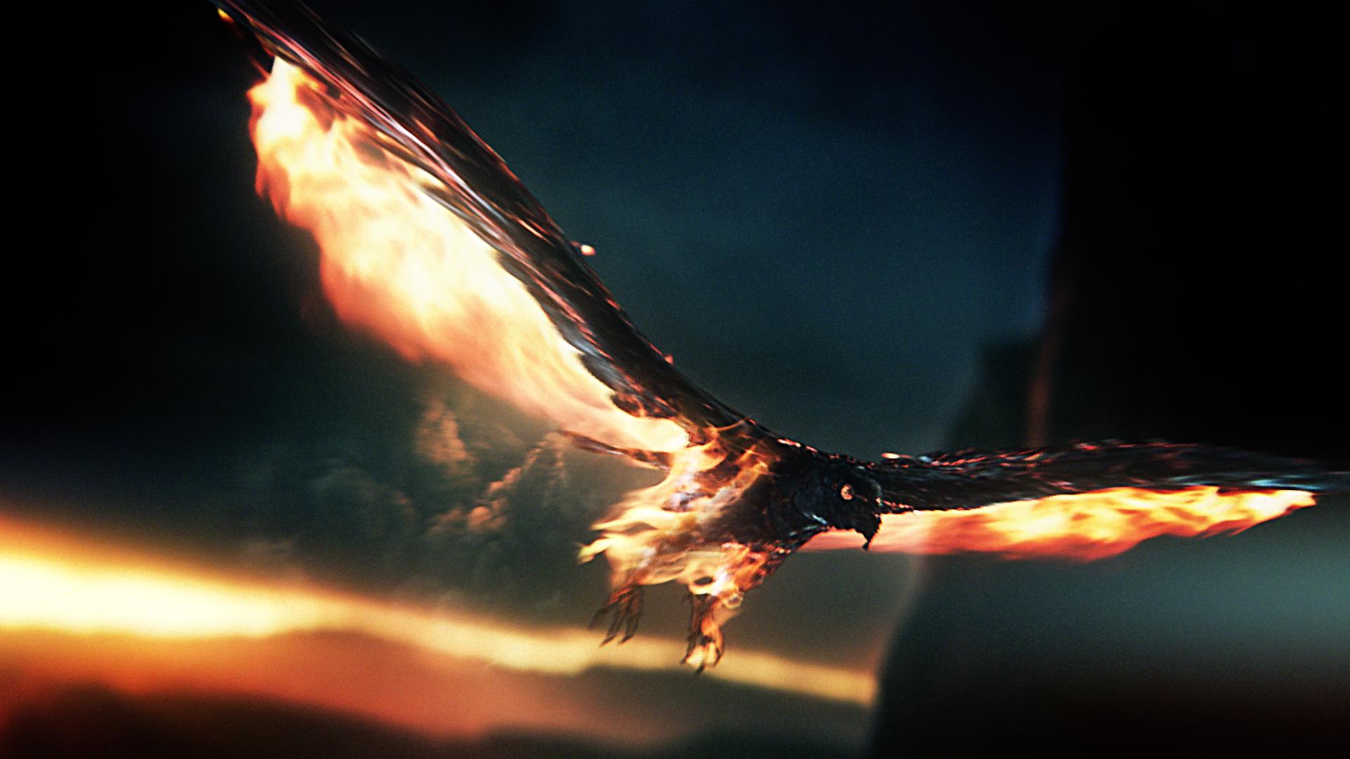 FIRESTORM FOOTBALL %22Training Grounds%22 Phoenix Concept.jpg