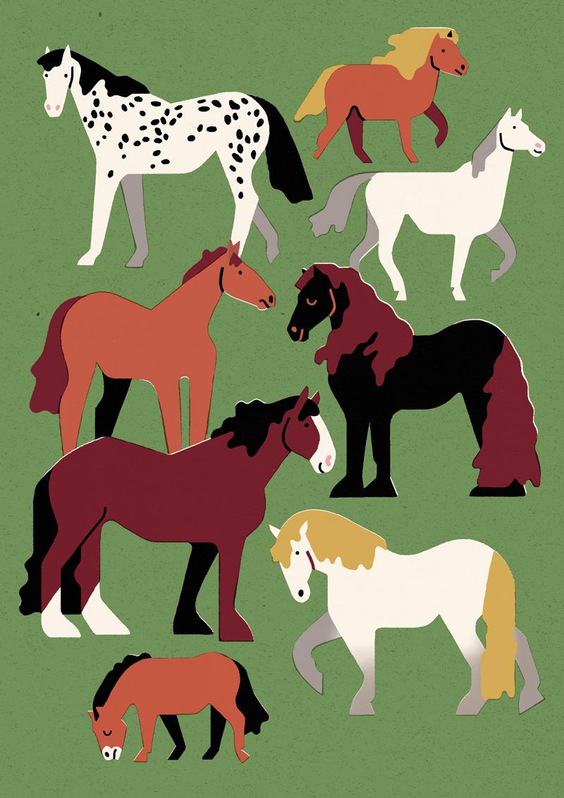 Antra_Svarcs_Maison-Georges_Horses_800px.jpg