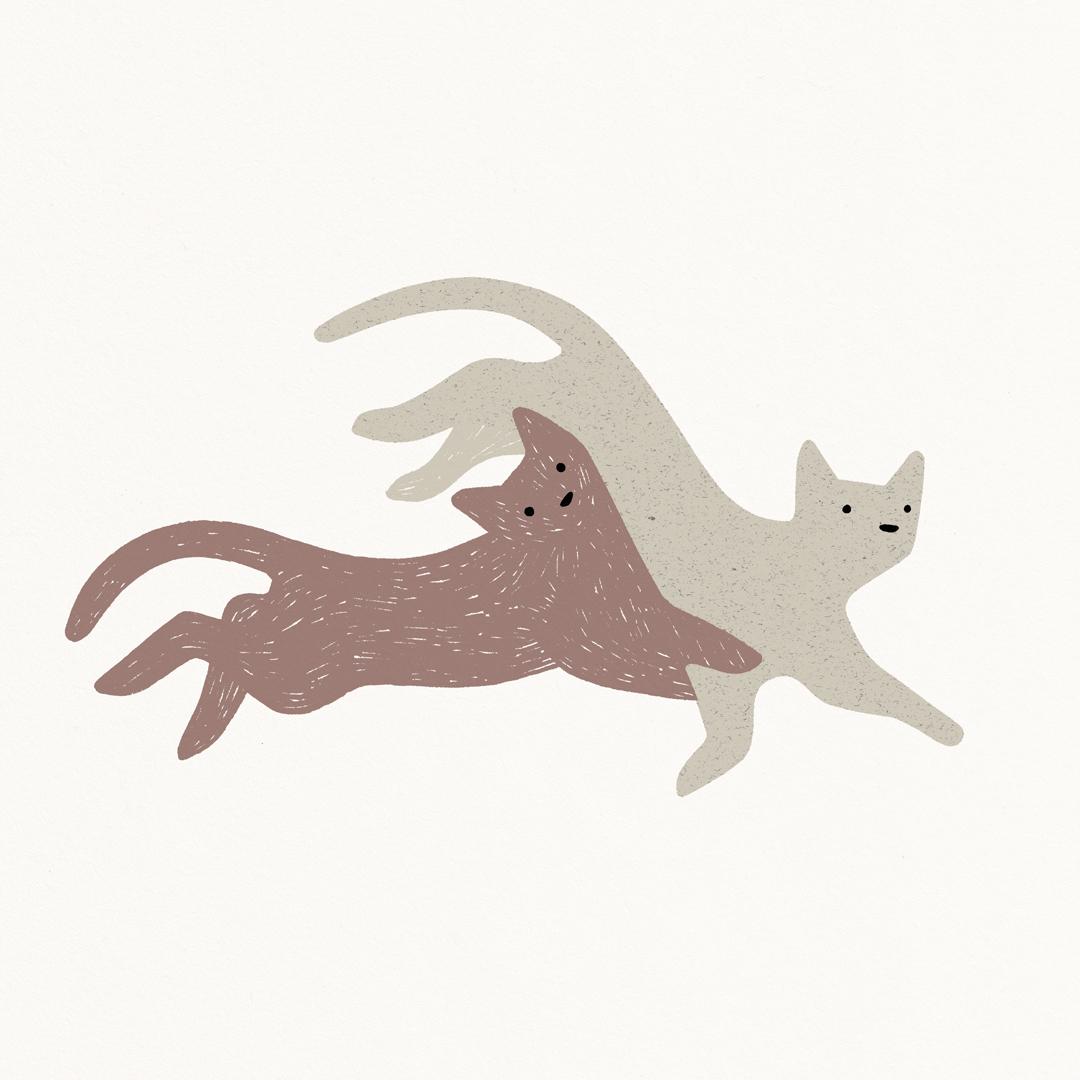 Antra Svarcs kittens.jpg