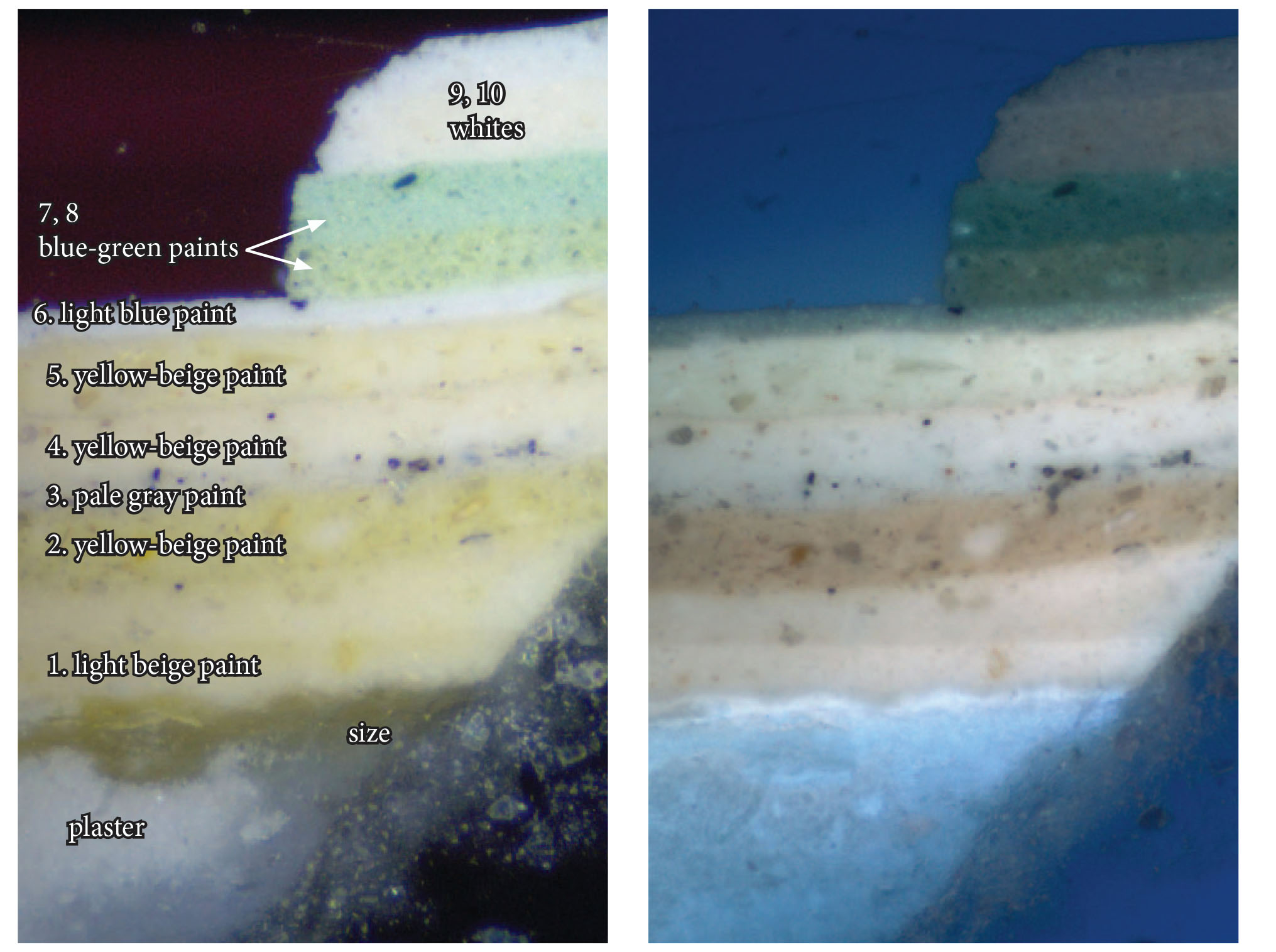 Above: Cross-section images, magnified 200X, of the orignal decorative finish (1. light beige paint) on plaster, under at least nine other paint layers. On the left is viewed under visible light and on the right under UV light (cross-section analysis and image by Kirsten Travers Moffit).