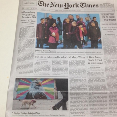 Peter Daverington's  Bald Eagle  on the front page of The New York Times.