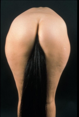 Julie Rrap,  Horse's Tale , 1999,cibachrome photograph, 120x120cm.