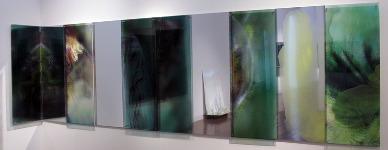JANET LAURENCE    Conversation with Plants  2012
