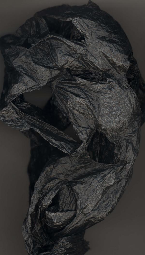 HUANG XU     Fragment No.15  2007 Chromophotography edition of 6 215 x 122 cm