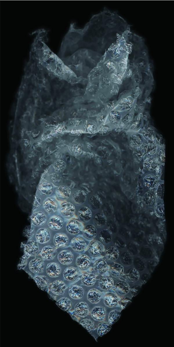 HUANG XU     Fragment No. 29  2007 Chromophotograph edition of 6 244 x 122 cm