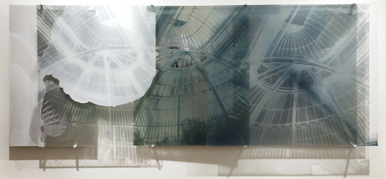 JANET LAURENCE    Botanical Residues (Clouded Memory)    2006   Duraclear on Shinkolite, Acrylic,aluminium, oil pigment   230 x 100