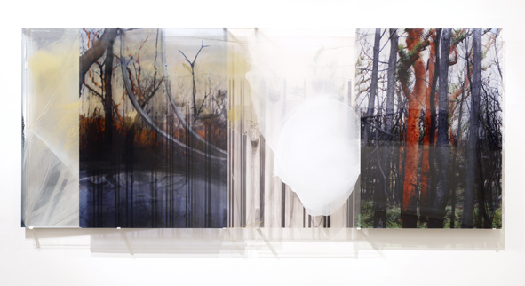JANET LAURENCE    Landscape & Residues(Ischaemic Land)    2006   Duraclear on Shinkolite Acrylic, aluminium, oil pigment   240 x 100