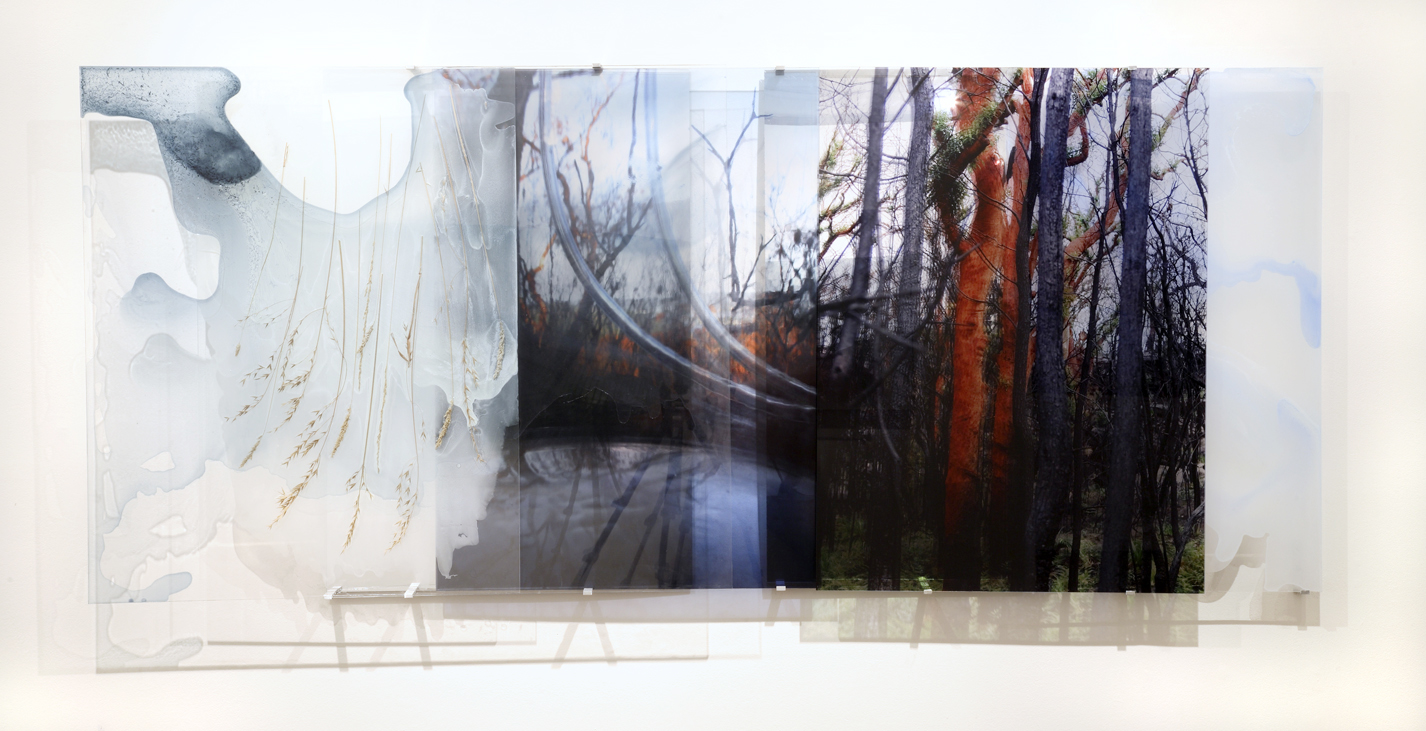 JANET LAURENCE    Landscape & Residues (Carbon Planting)    2006   Duraclear on Shinkolite Acrylic   220 x 100