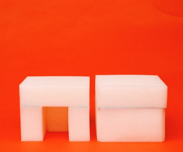 VANILA NETTO     Detergent Cells  2006 Digital print with archival mount edition of 5 90 x 108.4 cm