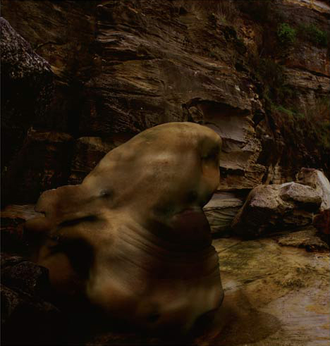 JULIE RRAP     Richard Cliff  2003 Digital print edition of 9 126 x 132 cm