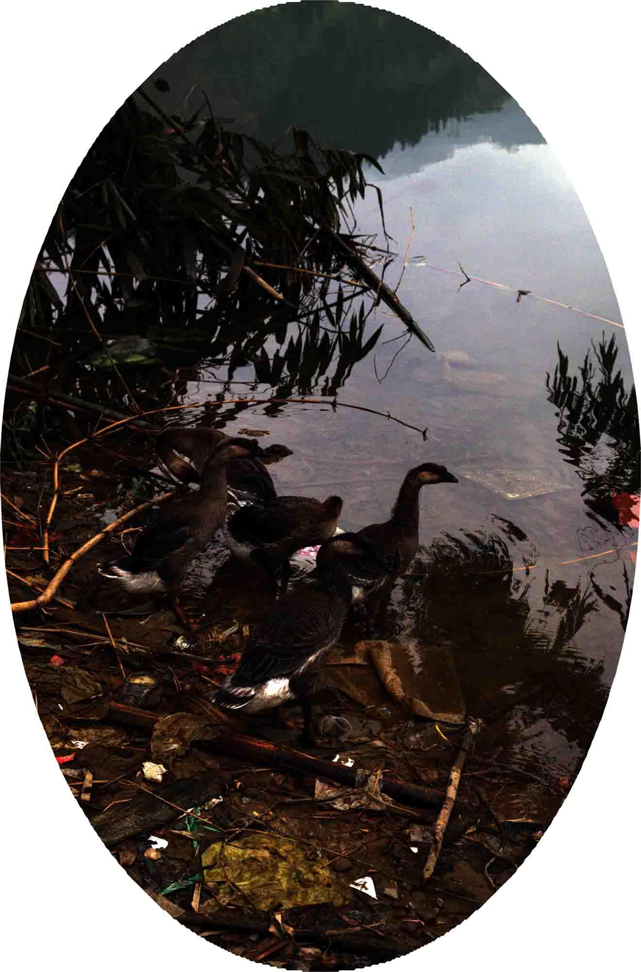 GUO JIAN   Picturesque Scenery  2012 Digital pigment print on archival cotton rag paper 90 x 60 cm