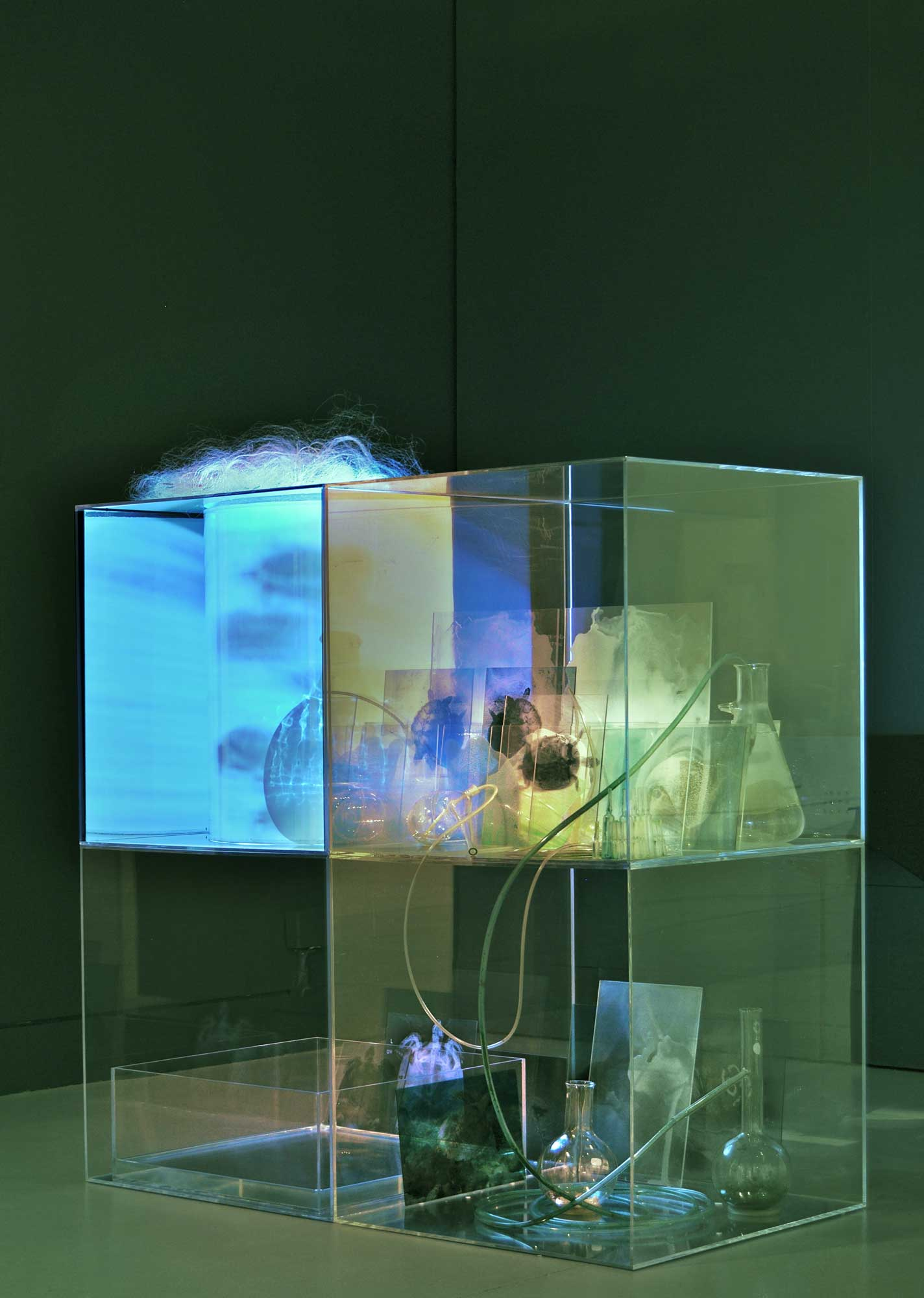 JANET LAURENCE    Stranded  2015 Glass, acrylic, duraclear, oil, pigments, water crystals and video