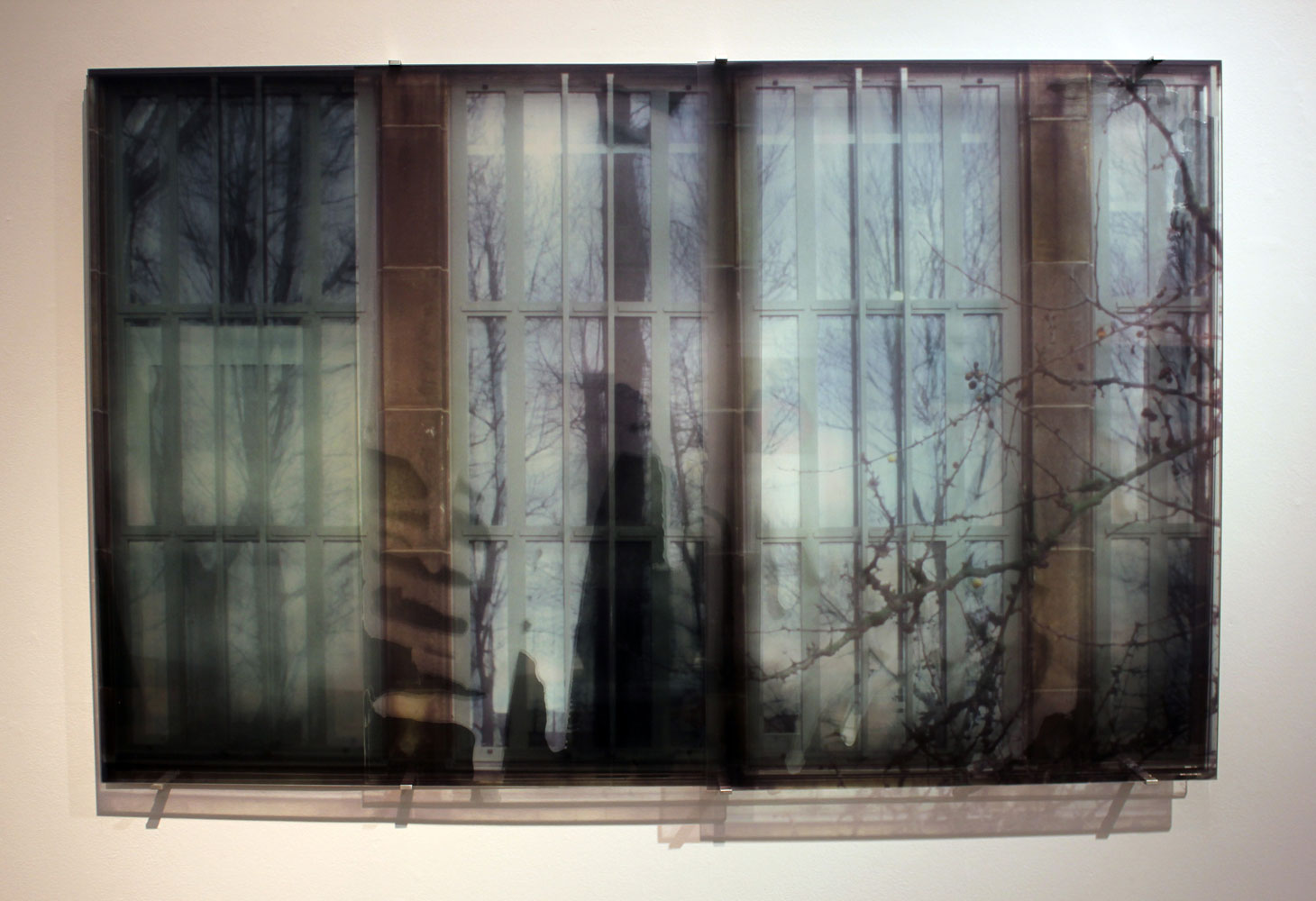 JANET LAURENCE    Membrane Diffusing History  2013 Duraclear, acrylic, mirror  160 x 100 cm