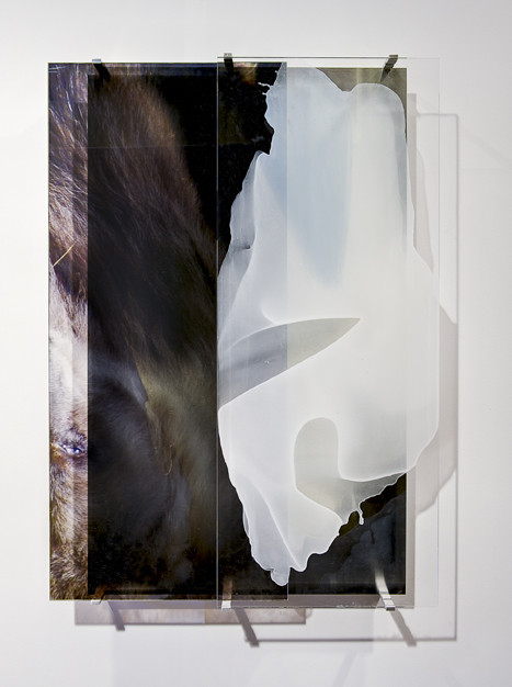 JANET LAURENCE    vanishing series / yearning IV  2010 Duraclear, Mirror, Oil on Acrylic  72 x 100 cm
