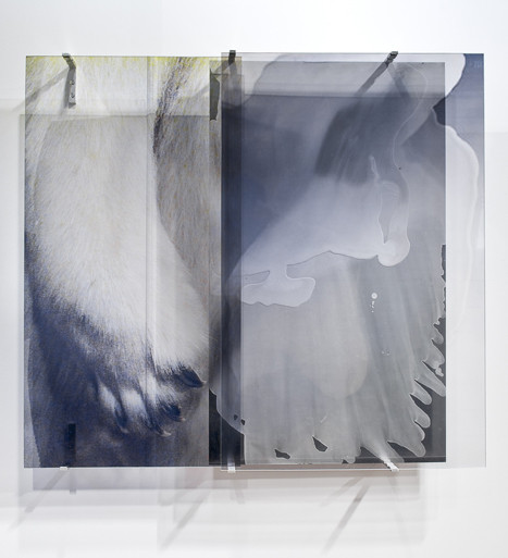 JANET LAURENCE    vanishing series / yearning 1  2010 Duraclear, Mirror, Oil on Acrylic  113 x 100 cm