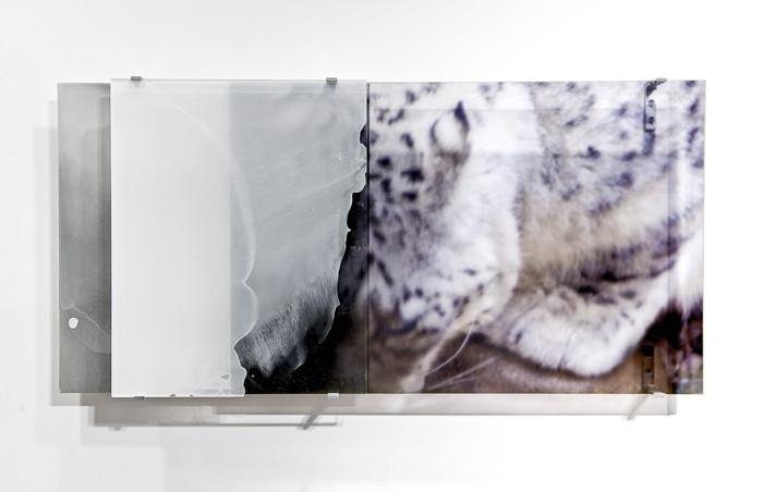 JANET LAURENCE    vanishing series / yearning VIII  2010 Duraclear, Mirror, Oil on Acrylic, Aluminium 103 x 50 cm