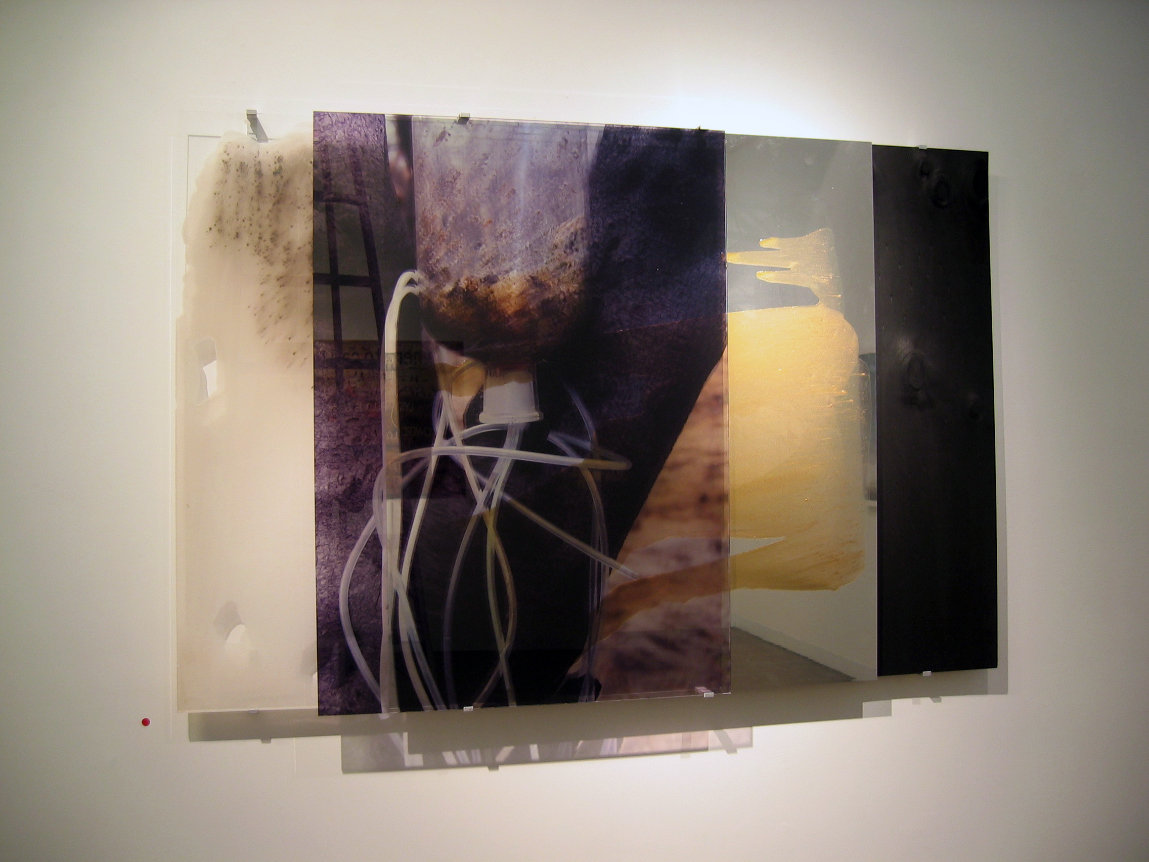JANET LAURENCE    Carbon Heart II  2006 Duraclear on Shinkolite Acrylic 155 x 100 cm