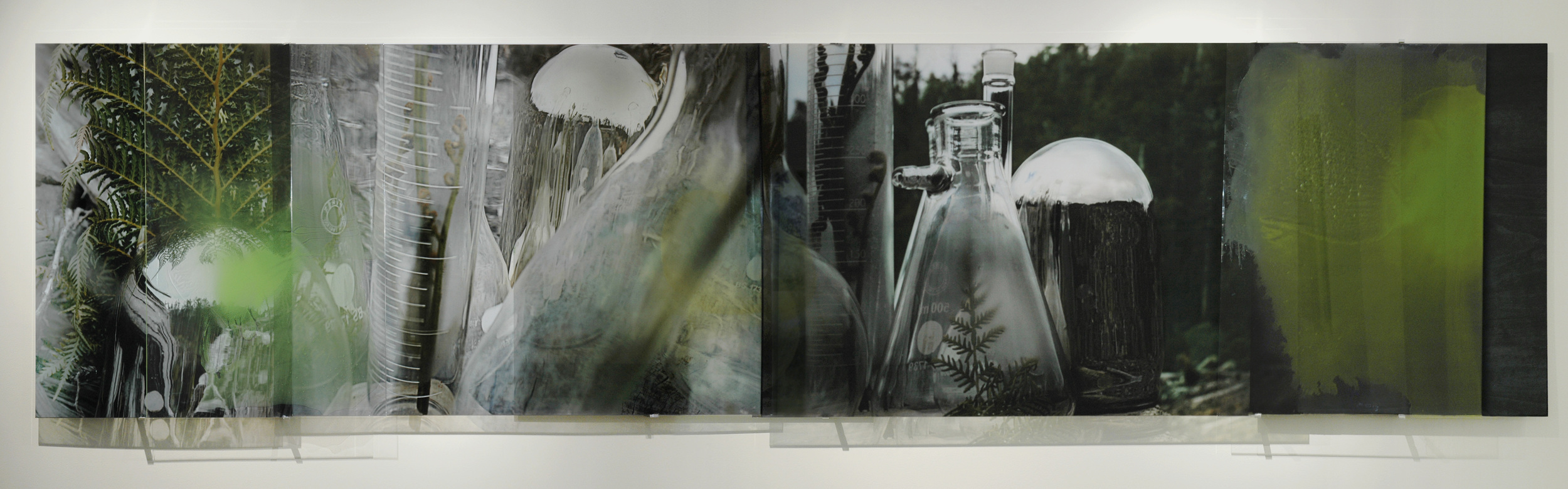 JANET LAURENCE   The Green That Was  ( Crimes against the Landscape  Series) 2008 Duraclear, polished aluminium, pigment on acrylic, mirror burnt wood 430 x 100 cm