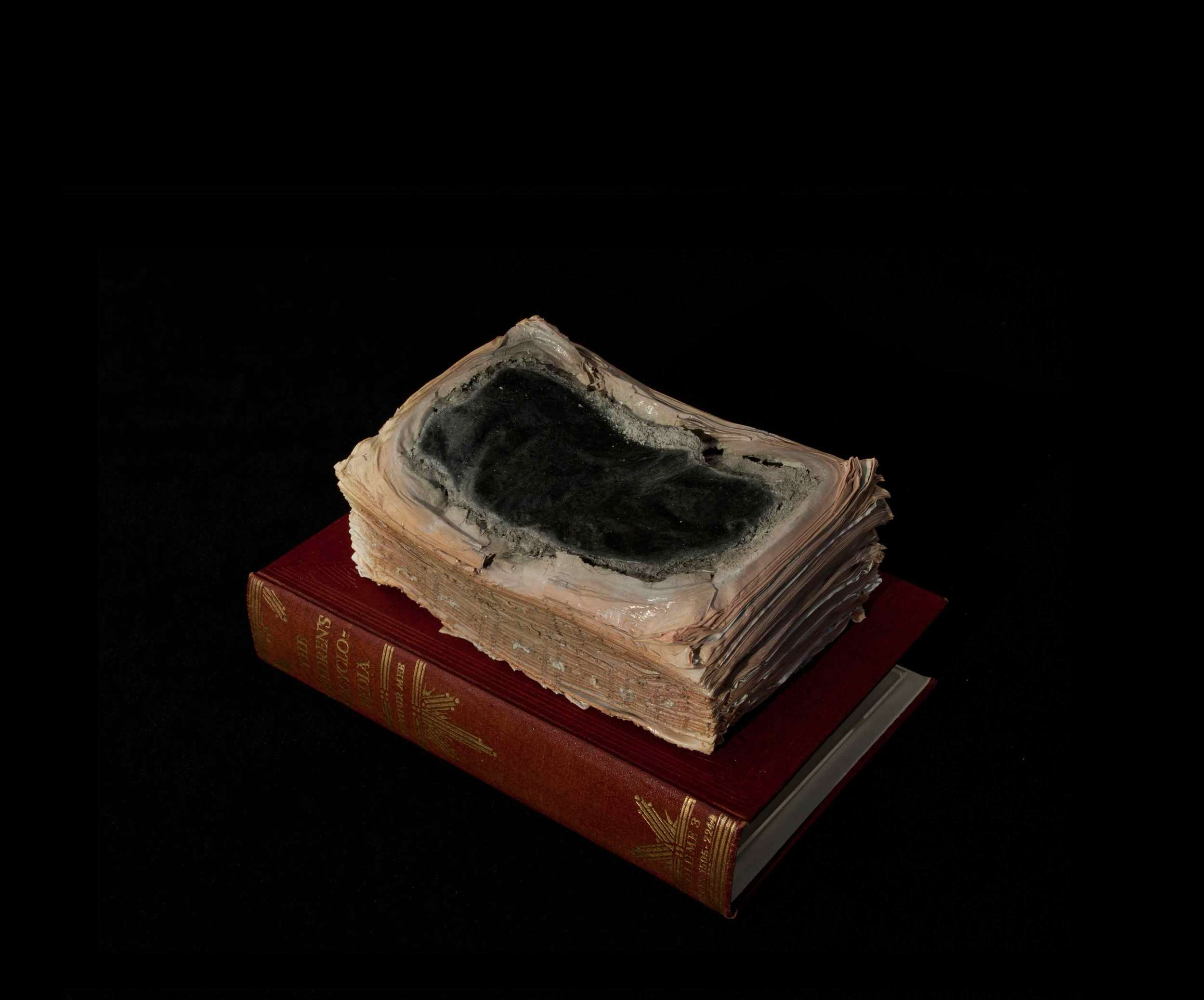 CYRUS TANG   Children's Encyclopaedia Vol 3  2016 Cremated book ashes, book cover and acrylic case 29 x 21 x 21 cm