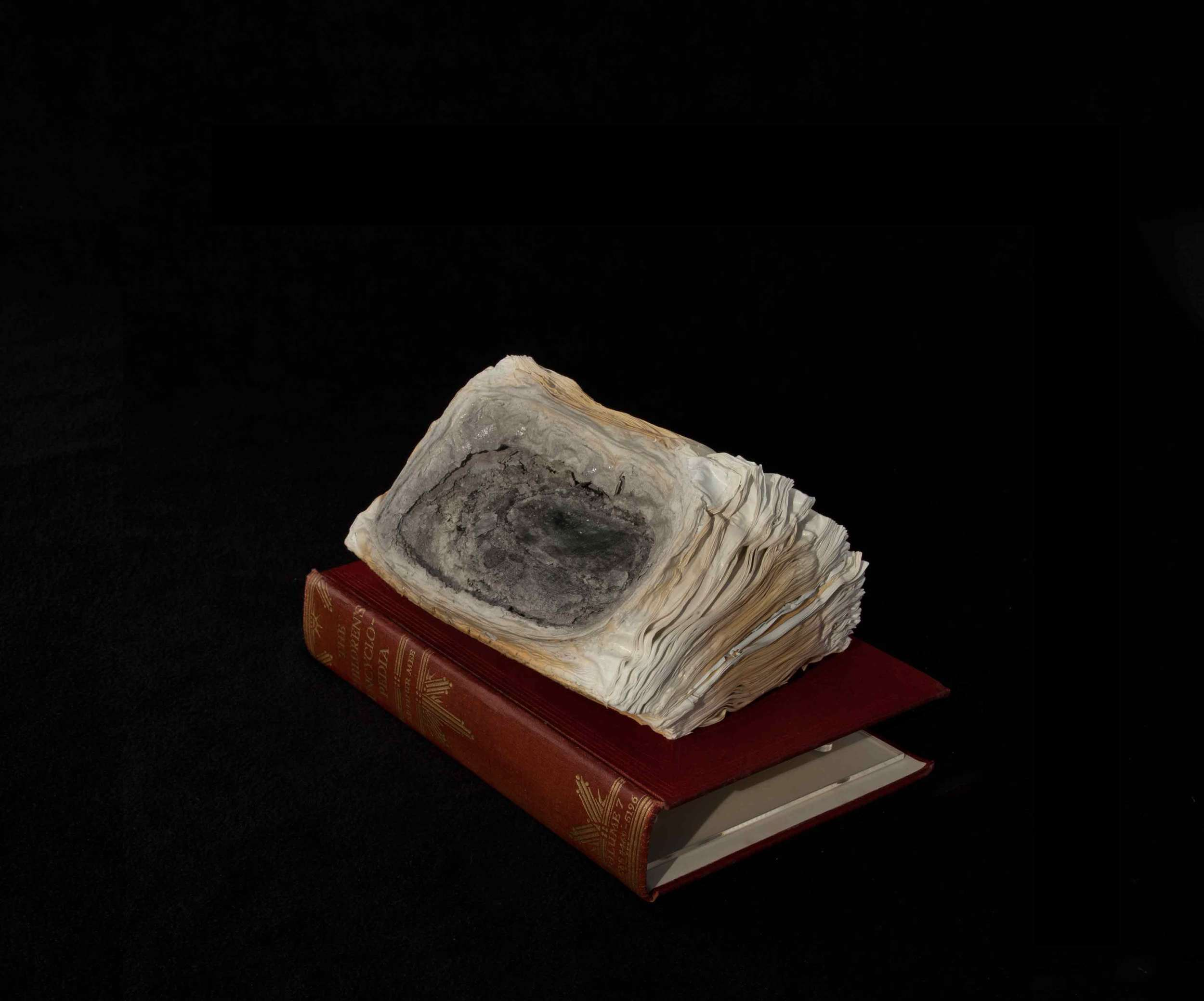 CYRUS TANG   Children's Encyclopaedia Vol 7  2016 Cremated book ashes, book cover and acrylic case 29 x 21 x 21 cm