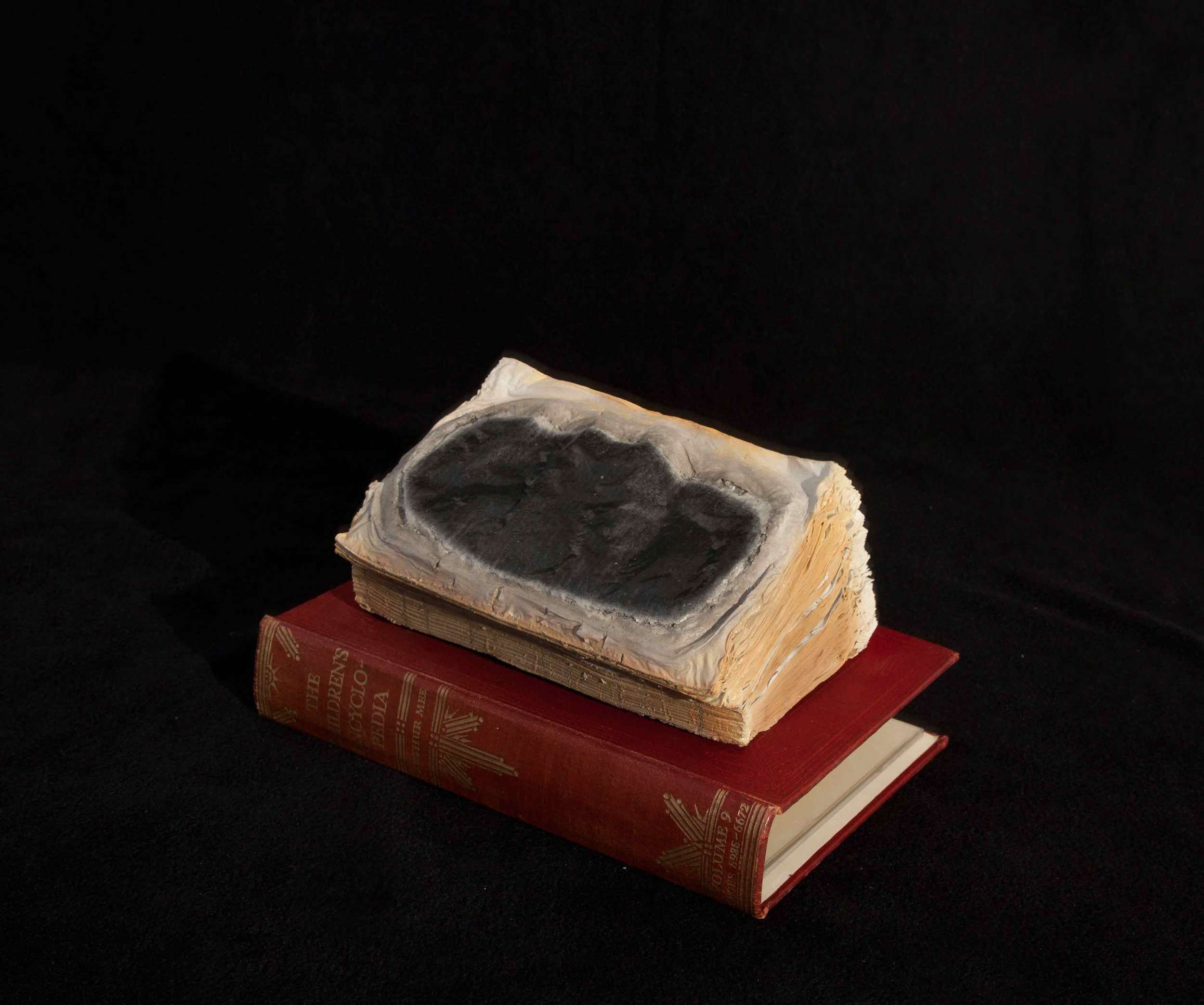 CYRUS TANG   Children's Encyclopaedia Vol 9  2016 Cremated book ashes, book cover and acrylic case 29 x 21 x 21 cm