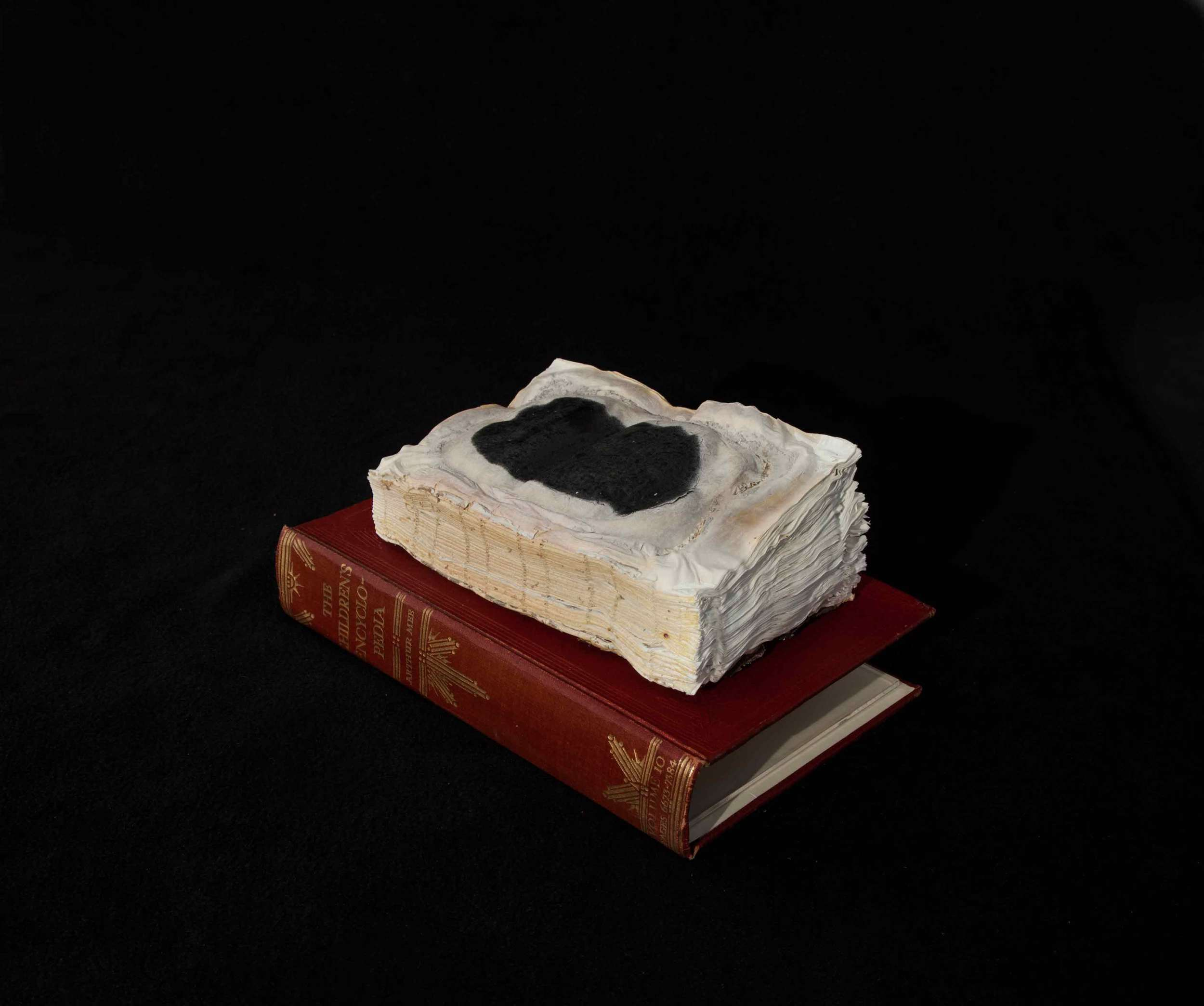 CYRUS TANG   Children's Encyclopaedia Vol 10  2016 Cremated book ashes, book cover and acrylic case 29 x 21 x 21 cm