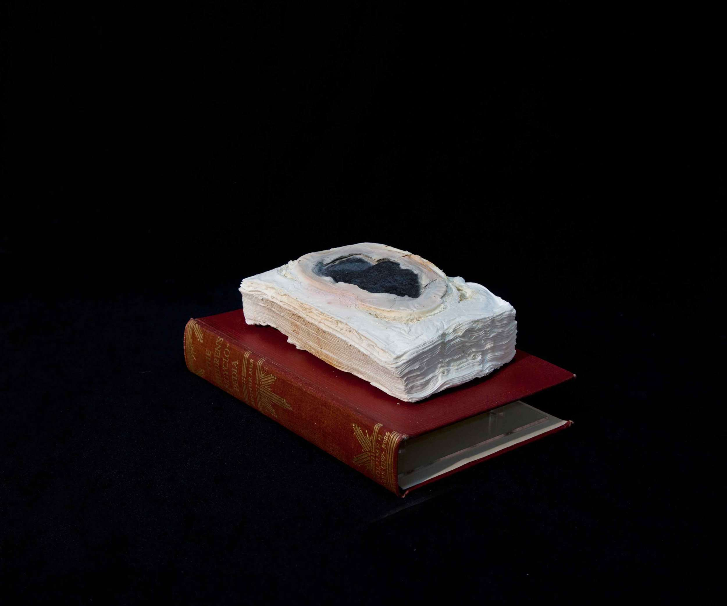 CYRUS TANG   Children's Encyclopaedia Vol 8  2016 Cremated book ashes, book cover and acrylic case 29 x 21 x 21 cm