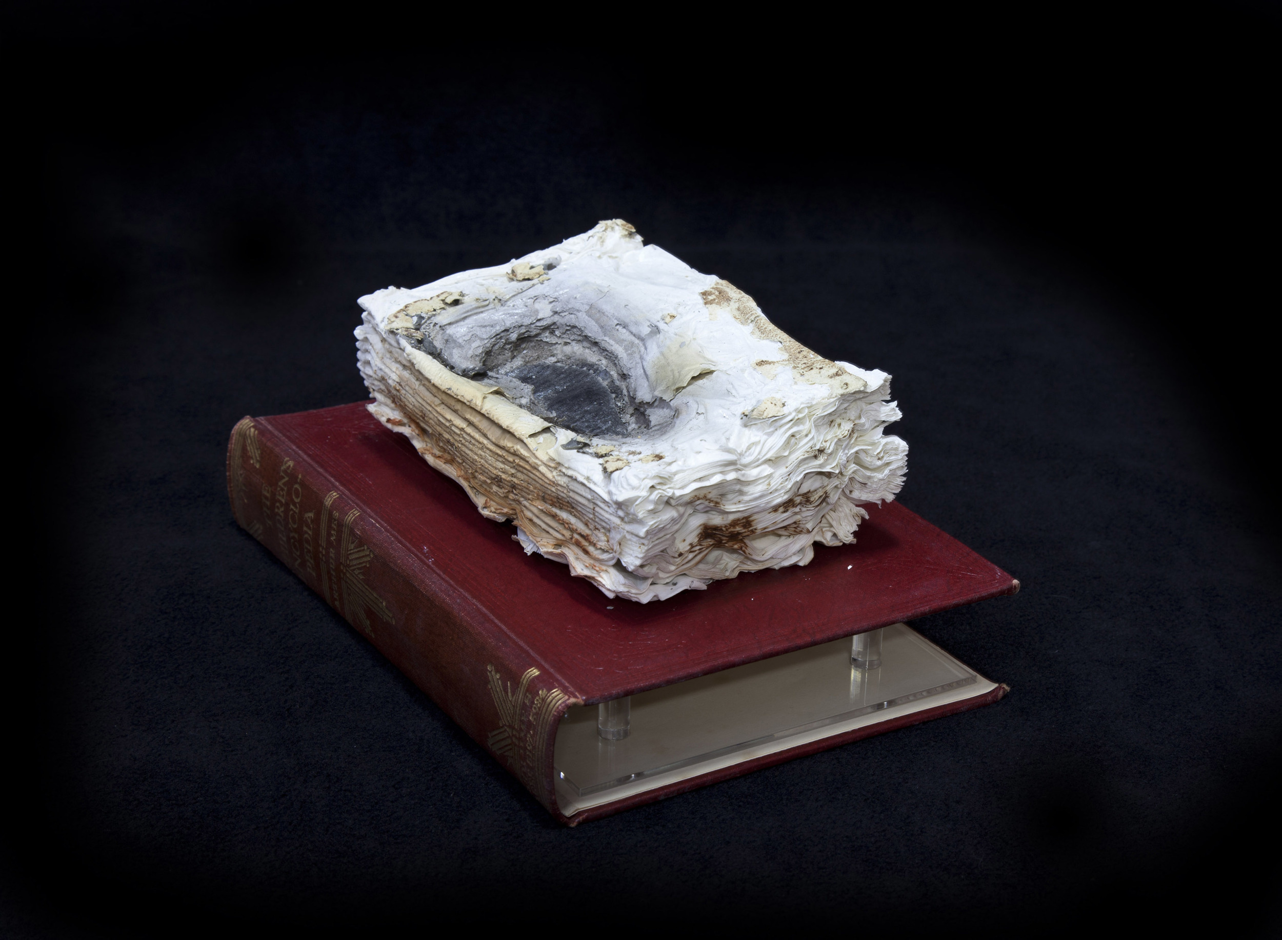 Cyrus Tang,  Children's Encyclopaedia Vol. 2,  2016, cremated book ashes, book cover and acrylic case, 29 x 21 x 21cm.