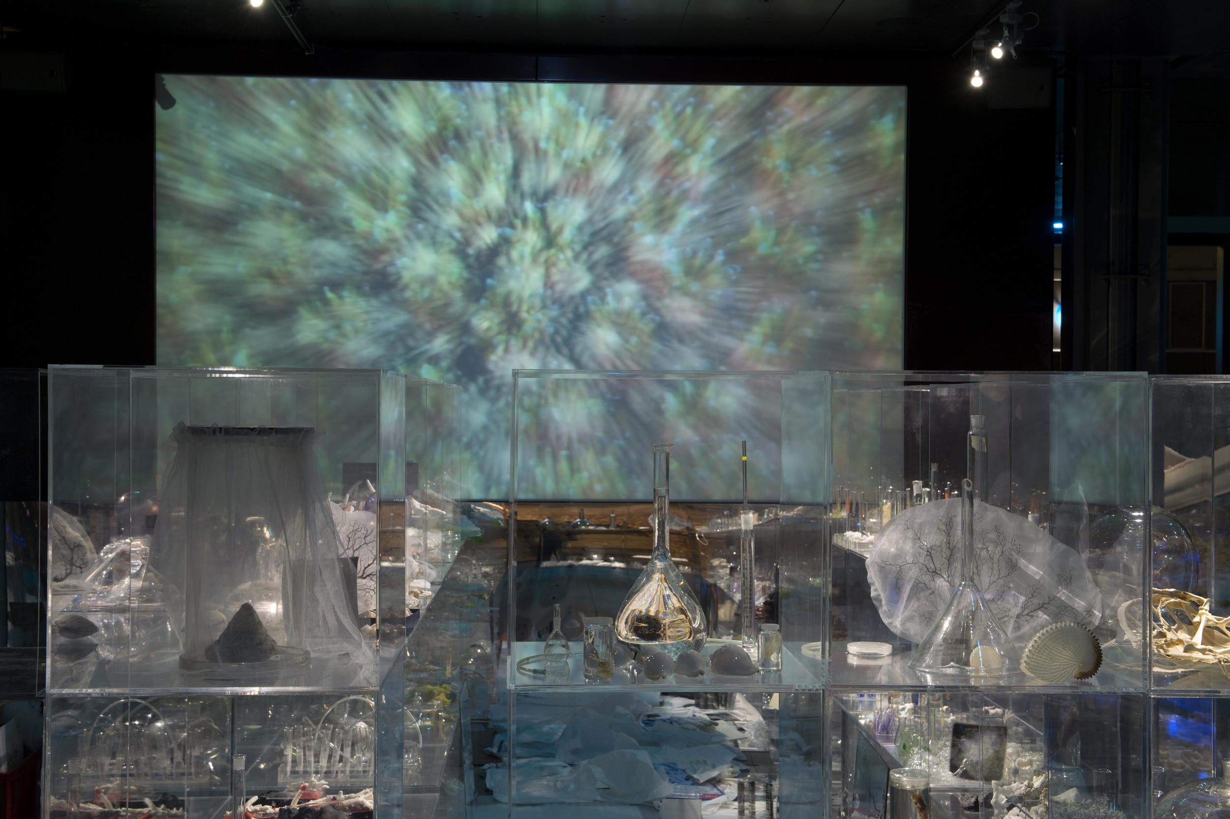 Janet Laurence, Deep Breathing , 2015, Installation, Paris.