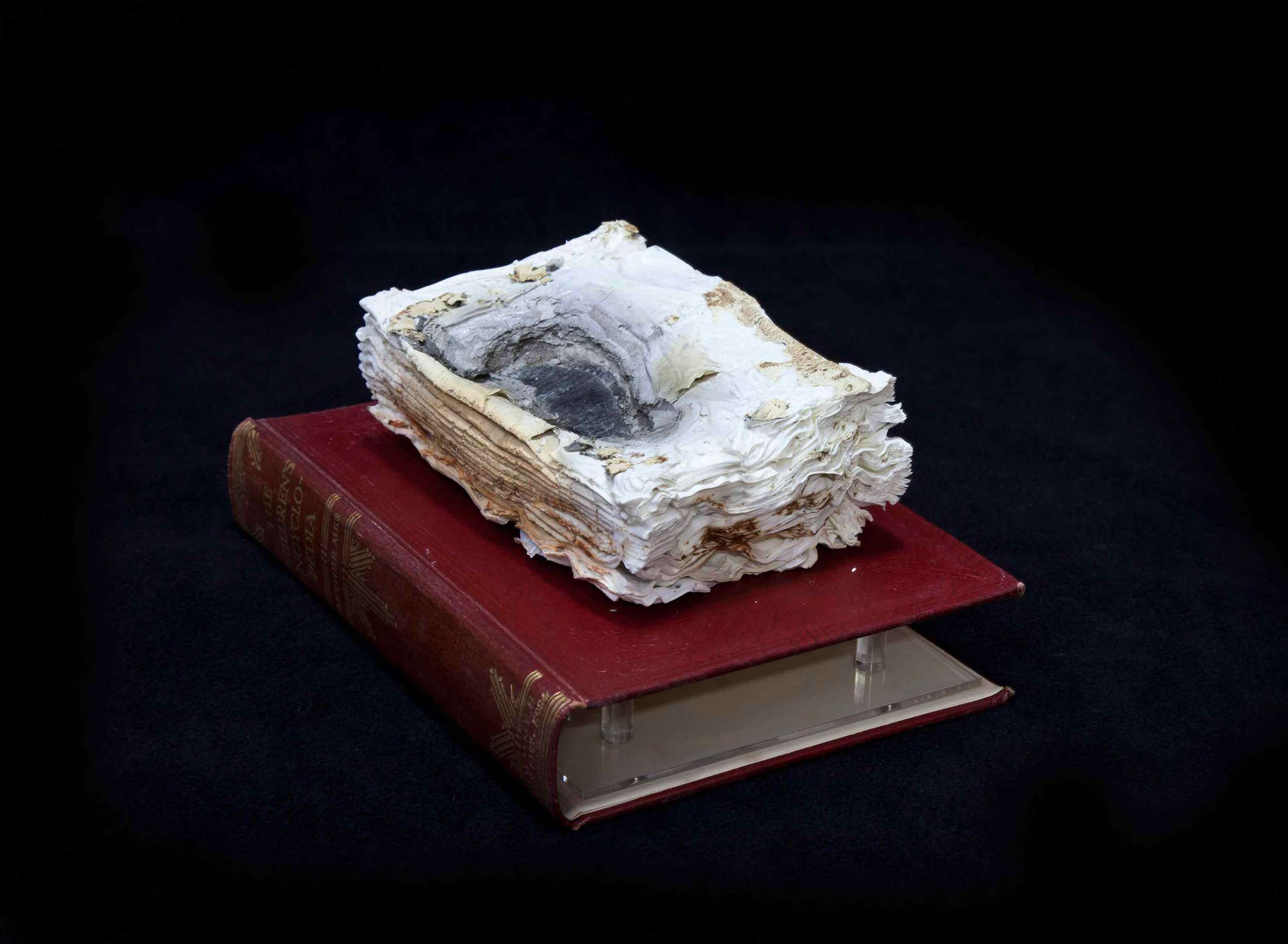 Cyrus Tang, Encyclopaedia Vol. 2, 2016, cremated book ashes and book cover,29 x 21 x 21 cm