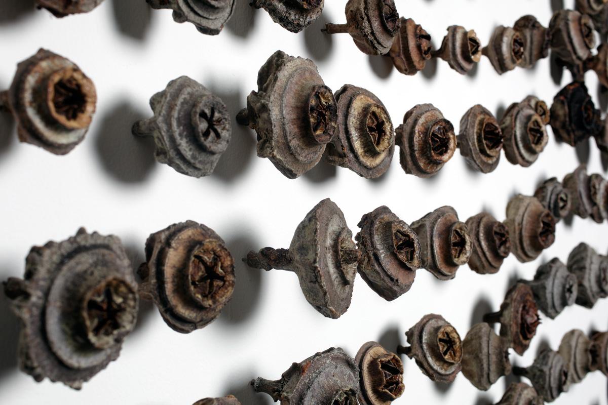 Maria Fernanda Cardoso,  Gumnuts  (detail), 2009, Tartu seeds, metal pins, 245 x 190 x 6cm.