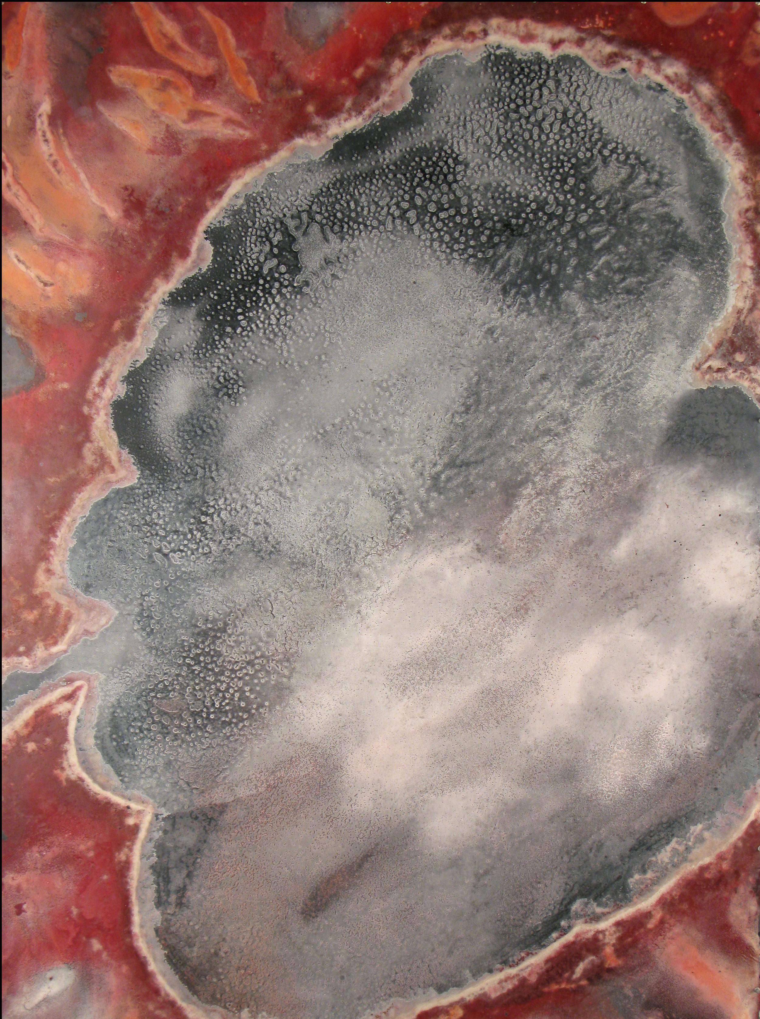 Salt Lake, 2011,Mixed media on canvas,180 x 133 cm