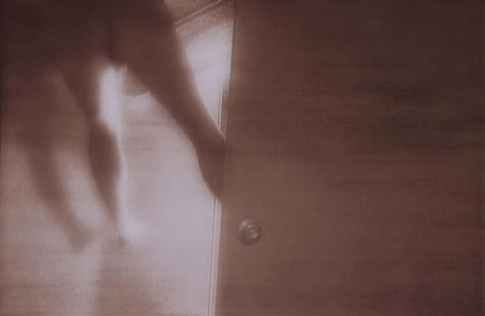 PAT BRASSINGTON   In Marble Halls 2  2003 Pigment print 78 x 120cm